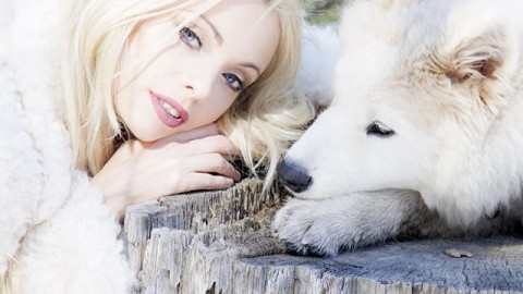 #SnowQueen #WhiteWolf -no knight in shining armour