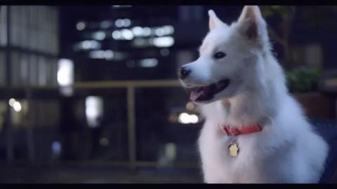 VIDEO: #LetItSnow 1 of 3 new #Xmas music