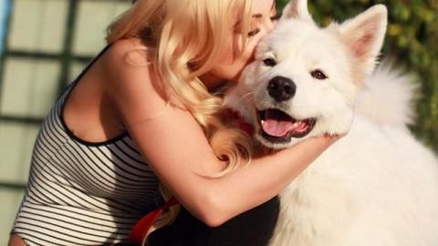 #NationalPuppyDay @annikasamoyed tag ur friends that like puppies!