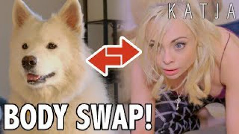 DOG BODY SWAP! Cursed: SELFISH B&%*H w Katja Glieson, Kailey Maurer, Juliano Hodges, Annika Samoyed